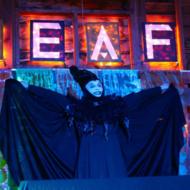 Toybox the Cartoon Witch. Photo: Paige Sandbank
