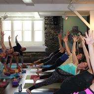 Pure Yoga Asheville